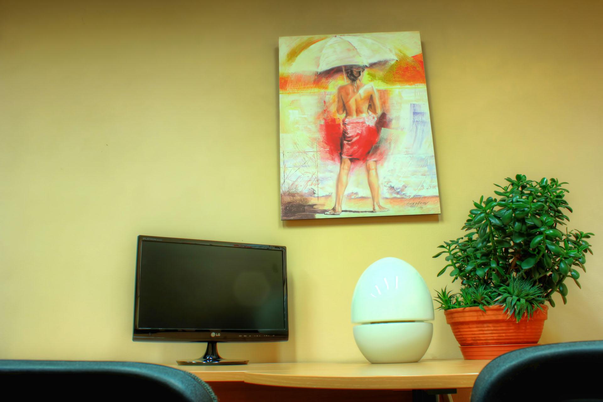 Detailní pohled na pracovní stůl s monitorem, lampou a sukulentem s obrazem T.Chekirova v pokoji Ornela